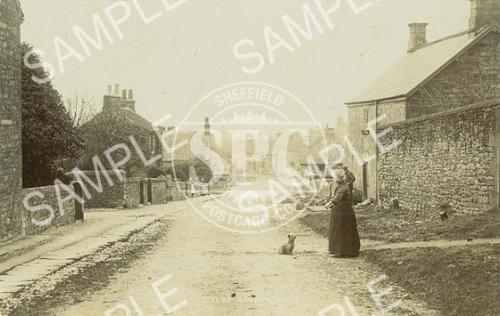 spc00143: Pilsley Nr. Bakewell, Derbyshire (2) (Woman and Dog)