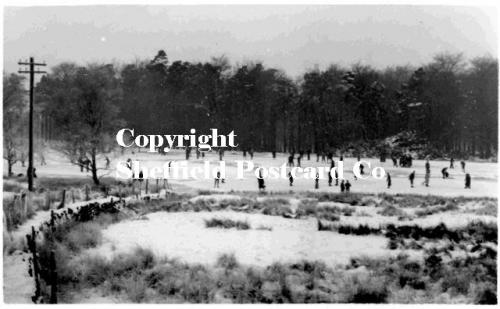 spc519: Longshaw - Skaters on pond