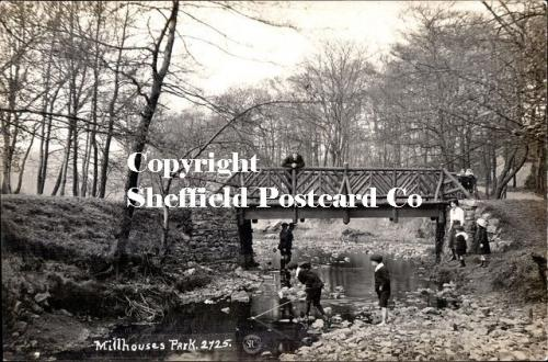 Millhouses Park 2725 (children playing in stream & on wooden bridge)