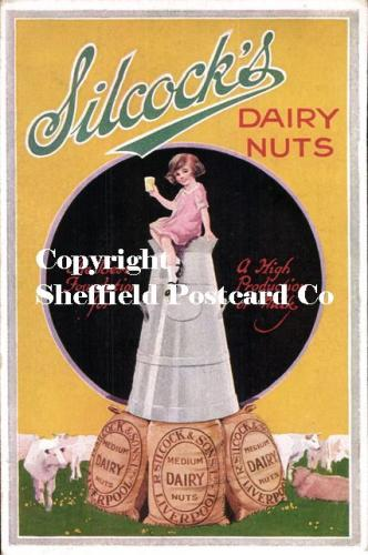 spc642: Kitchen & Food postcard adverts [Silcock's Dairy nuts]